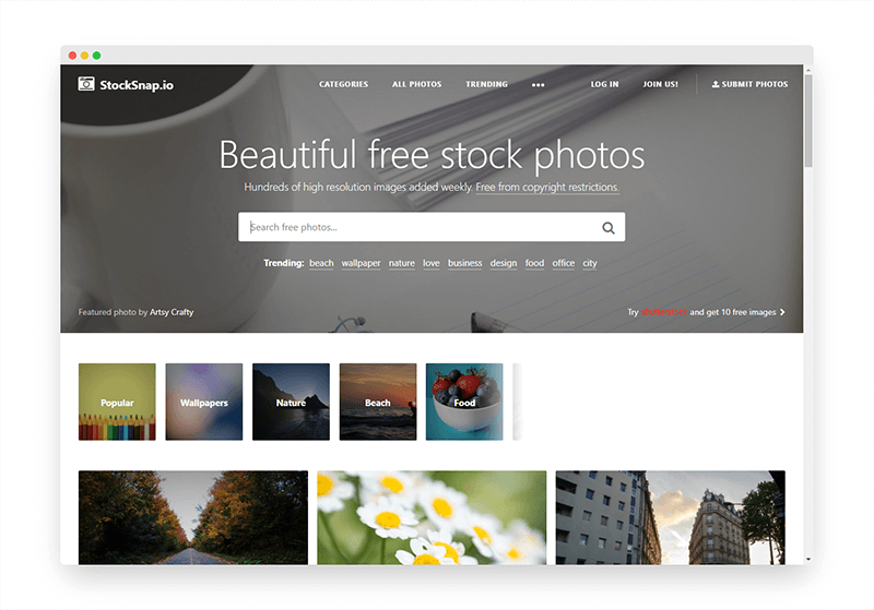 StockSnap | 超赞!让你瞬间拥有高质量免费图片
